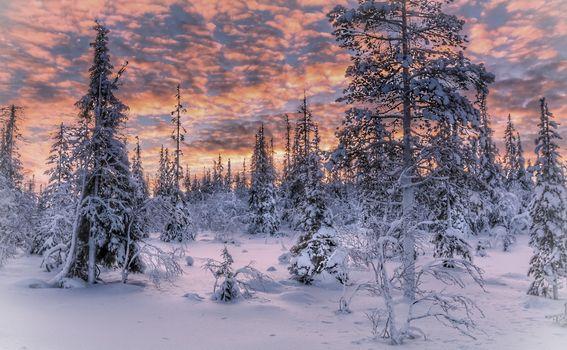 Фото бесплатно Мурманская область, Россия, закат