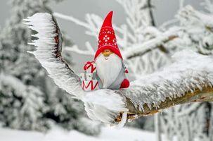 Бесплатные фото сувенир,санта клаус,новый год,рождество,иней,фигурка,снег