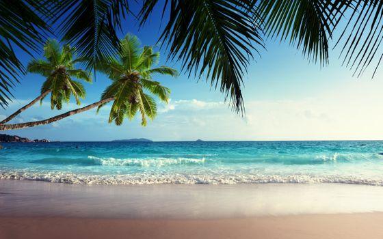 Photo free paradise, sky, sun