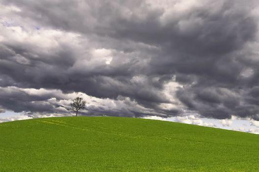 Заставки темные облака, трава, небо