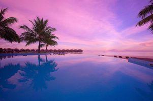 Фото бесплатно остров, Мальдивы, пальмы