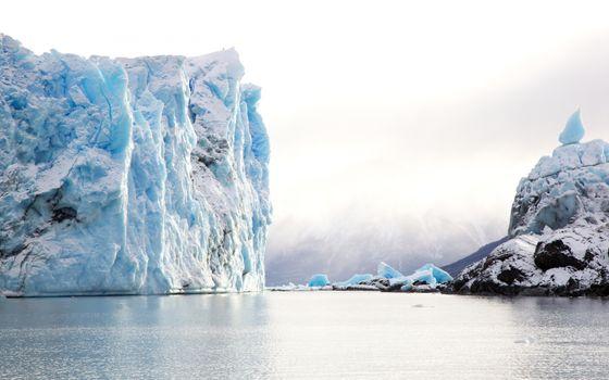 Photo free iceberg, ocean, argentina