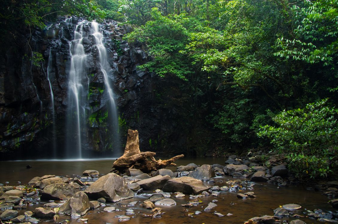 Фото бесплатно Zillie waterfall, Australia, водопад, лес, камни, деревья, природа, пейзаж, природа