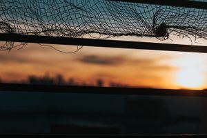 Photo free mesh, blur, background