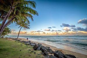 Бесплатные фото закат,море,пальмы,пляж,пейзаж
