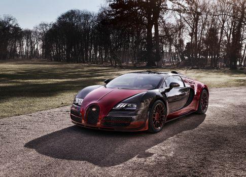 Фото бесплатно Bugatti Veyron, дорога, деревья