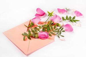 Фото бесплатно цветы, конверт, розы