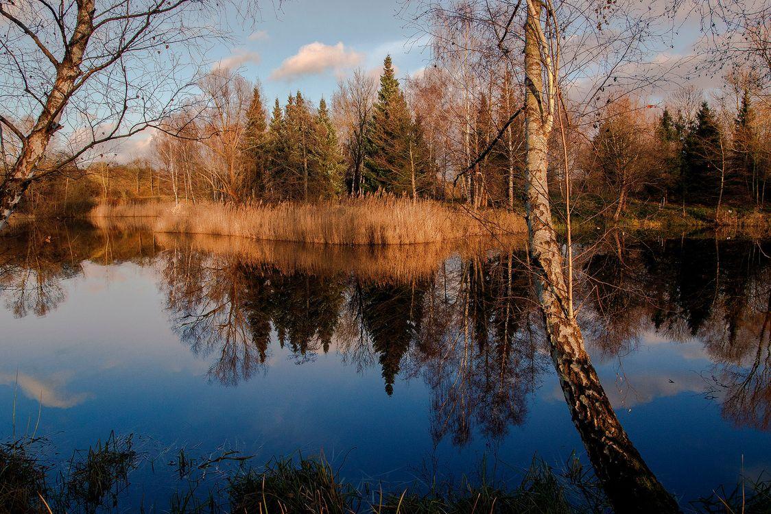 Обои озеро, закат солнца, сумерки картинки на телефон