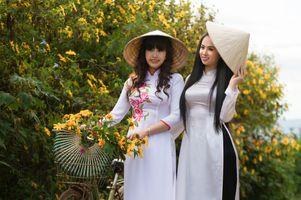 Фото бесплатно цветок, растение, девушка