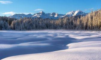 Обои Словения, Альпы, зима, снег, сугробы, деревья, горы, пейзаж