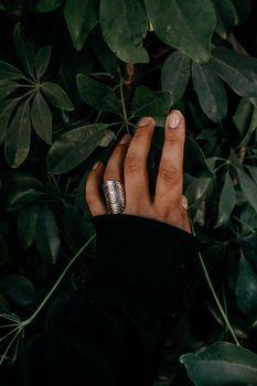 Фото бесплатно рука, кольцо, листья