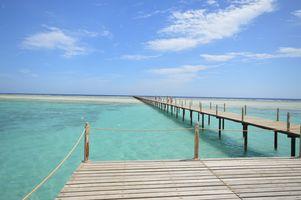 Photo free laguna, nature, boardwalk