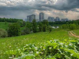 Бесплатные фото Moscow,Москва,Россия,парк,водоём,дорога,деревья