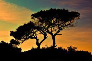 Фото бесплатно красное небо утром, горизонт, природа
