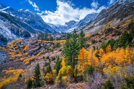 Фото бесплатно осень, горная осень, Калифорния
