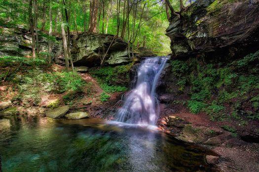 Фото бесплатно Пенсильвания, деревья, природа