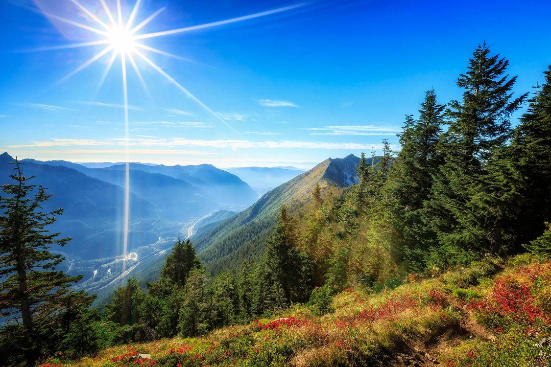 Free photo mountains, trees, sun - to desktop
