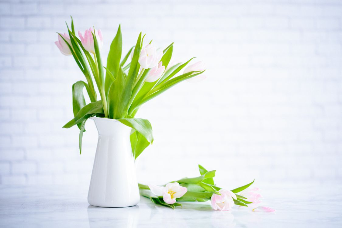 Photos for free vase, flowers, bouquets - to the desktop