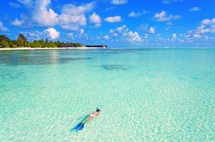 Бесплатные фото тропики,море,остров,пляж,девушка,дайвинг