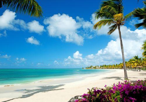 Фото на телефон море, тропики