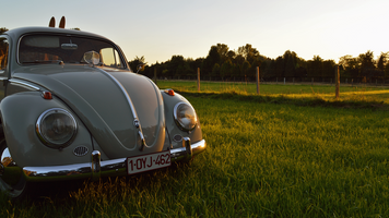 Photo free Volkswagen, Volkswagen Beetle, автомобиль