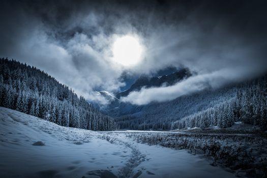 Photo free Large Malonets Glade, Tatras, winter