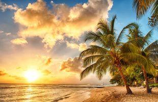 Фото бесплатно тропики, закат, пляж