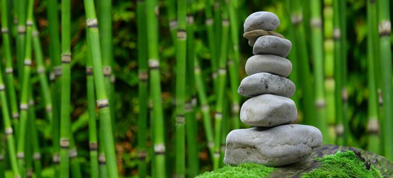 Photo free bamboo, zen stones, stones