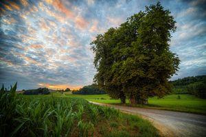 Бесплатные фото Бавария,Германия,закат солнца,поле,дерево,дорога,небо