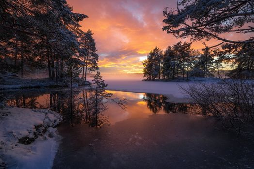 Photo free Norway, ringerike, field
