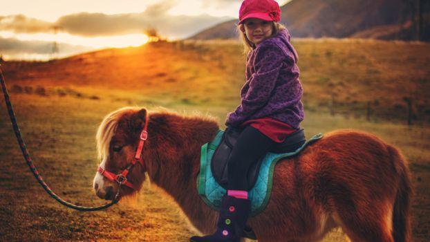 Photo free lass, horse, jockey