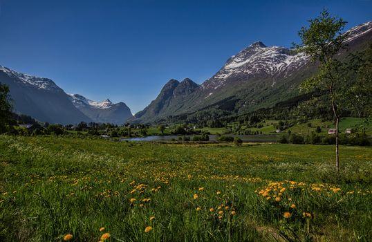 Фото бесплатно пейзажные луга, пейзаж, луг