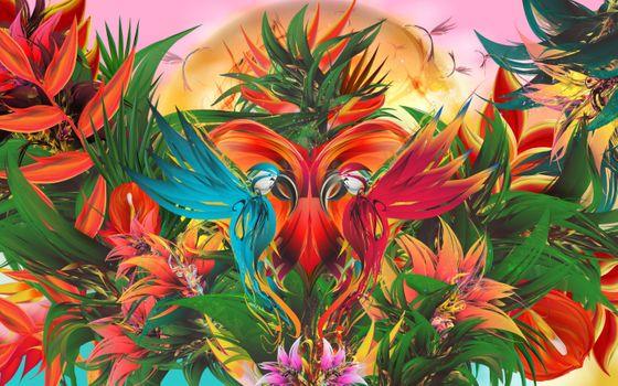 Photo free parrot, colors, graphics
