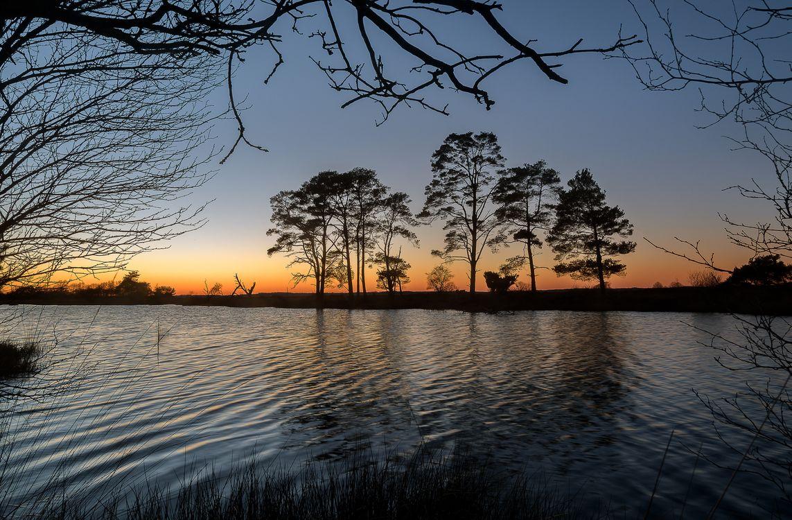 Обои закат, озеро, деревья картинки на телефон