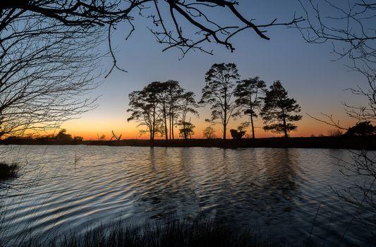 Бесплатные фото закат,озеро,деревья,силуэты,пейзаж