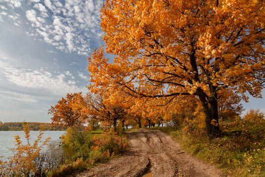 Фото бесплатно пейзаж, осень, времена года