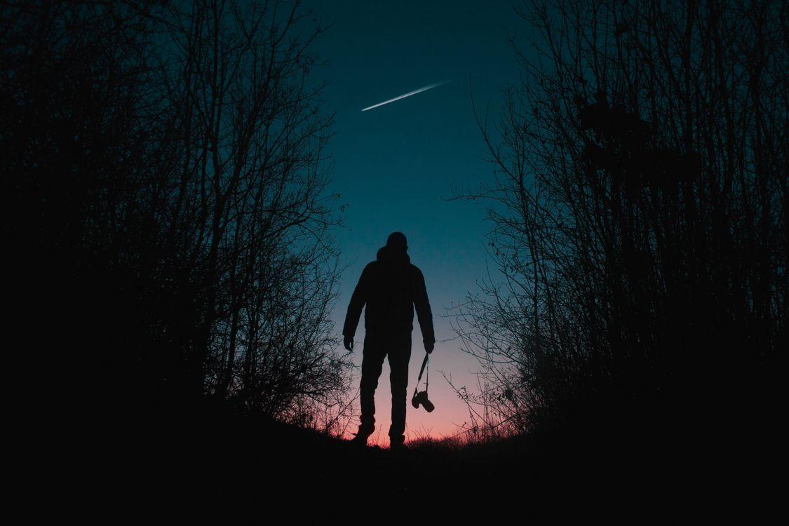 Фото бесплатно человек, силуэт, фон, фотоаппарат, деревья, ночь, ситуации