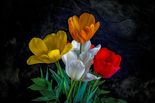 Photo free tulips, bouquet, flowers