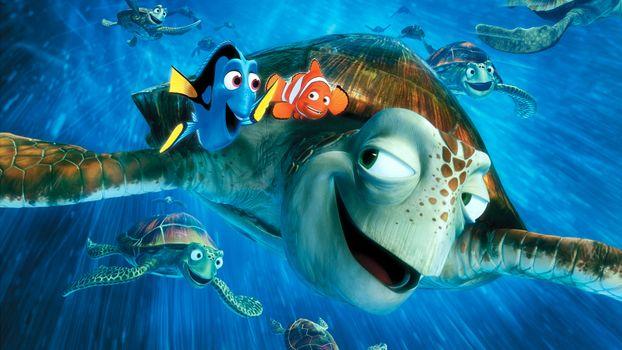 Заставки В поисках Немо, рыбки, черепаха