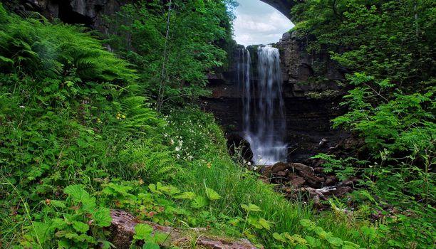 Photo free pond, arch, stones