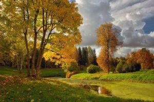 Бесплатные фото В Павловске осень,водоём,парк,пруд,деревья,небо,пейзаж