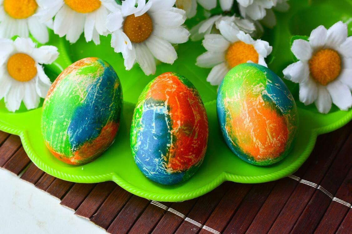 Фото ромашки цветы цветные яйца - бесплатные картинки на Fonwall