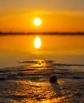 Photo free landscape, shell, sunset
