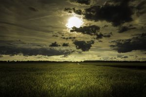 Бесплатные фото природа,облака,солнце,трава,тучи