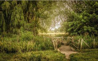 Бесплатные фото поле, тропинка, забор, деревья, пейзаж