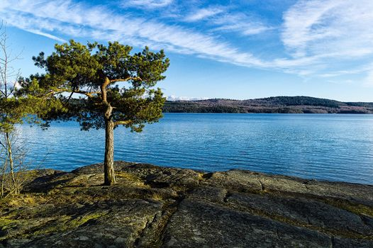 Фото бесплатно река, скалистый берег, дерево