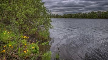 Бесплатные фото Московская область, Россия, Подмосковье, закат, озеро, деревья, тучи