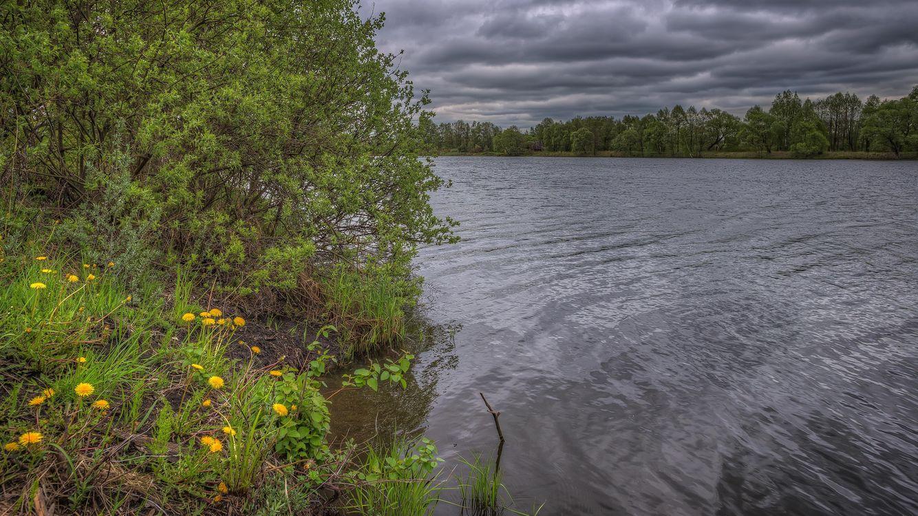 Фото бесплатно Московская область, Россия, Подмосковье, закат, озеро, деревья, тучи, пейзаж, пейзажи