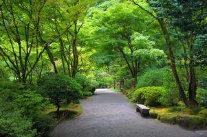 Заставки Japanese garden,Японский сад,парк,дорожка,деревья,лавочка,пейзаж