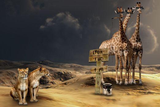 Заставки львы и жирафы, фантазия, фантастика